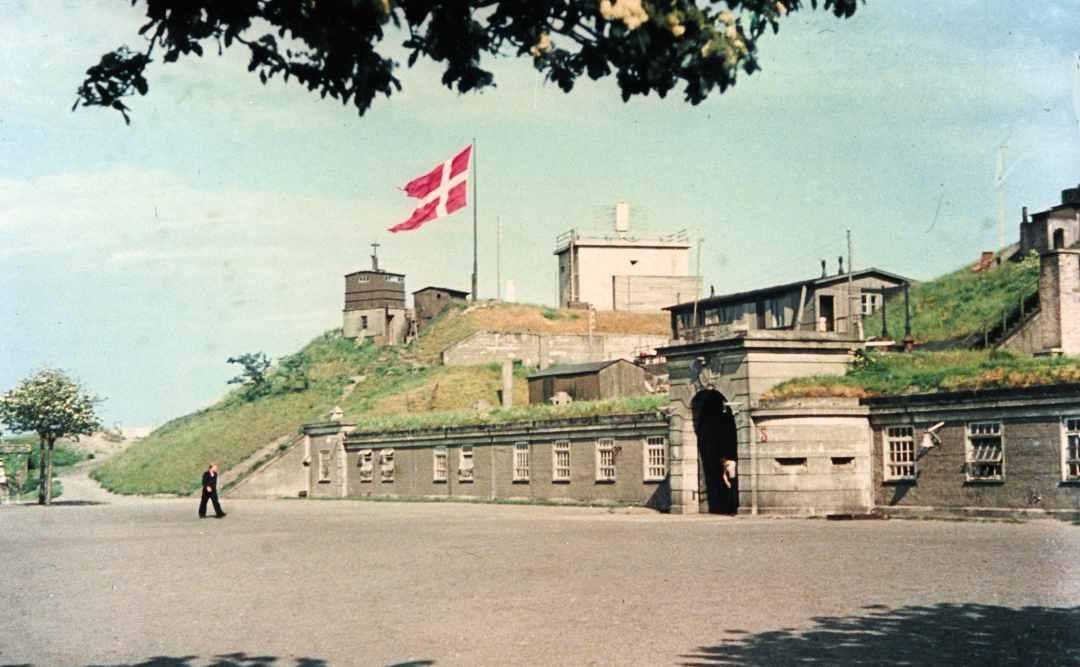 Dines Bogo Guldmonter Dragor Fort Fort Knox