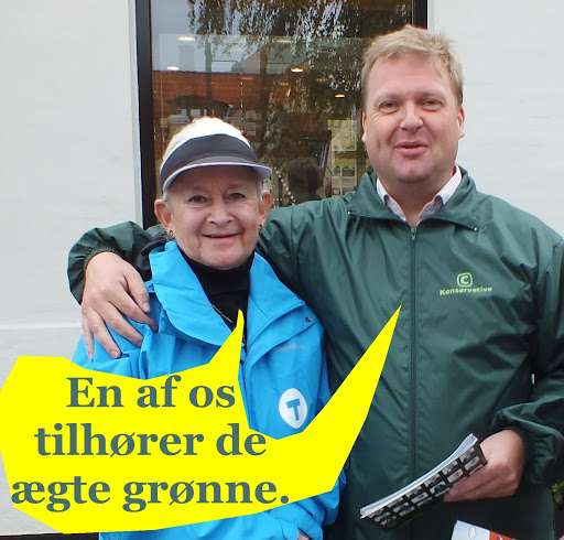 Kommunalvalg Dragør 2013