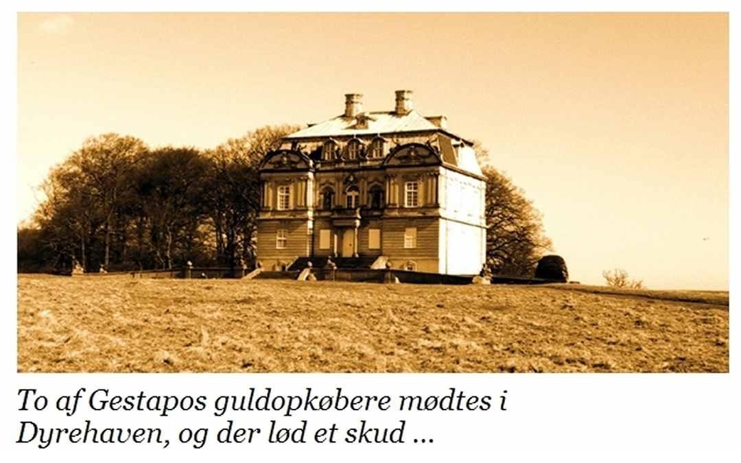 Eremitageslottet - Meyer / Emmik - Dines Bogø
